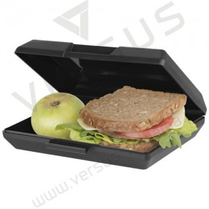 Lunch box OBLONG